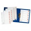ESSELTE regiszter, A4, műanyag, 1-6, szürke