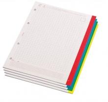 PANTA PLAST gyűrűsbetét, A4, 60 lapos, 4 lyukú, Gemini, fehér, kockás