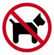 APLI információs címke - Kutyát bevinni tilos, 114x114 mm