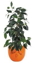 kaspó szett, kerámia, 3 db-os, narancs, arany levelekkel