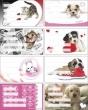 PANTA PLAST füzetcímke, 24 db, Girls
